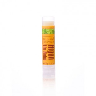 Бальзам для губ с маслом Аргана и мятой Argan Oil Peppermint Lip Balm - 0.15 oz (4.25 g)